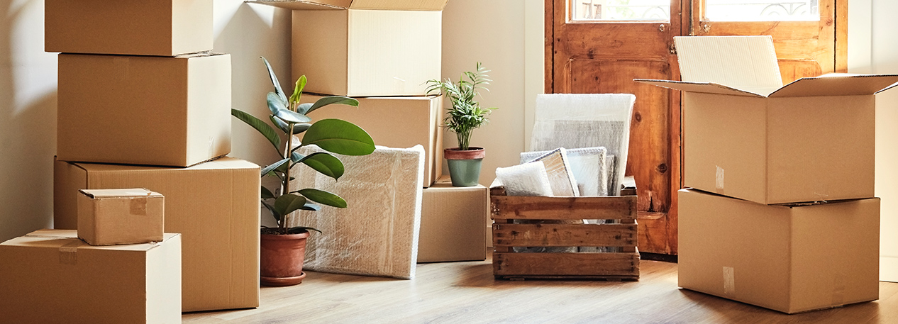 A crate, potted plants and moving boxes sitting inside the front door of a house