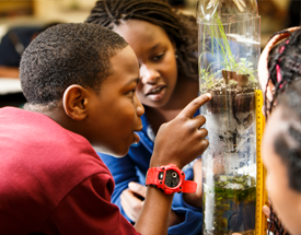 Wissahickon Charter School is a high-performing Philadelphia school that focuses on the environment as an integrating theme for K–8 instruction.